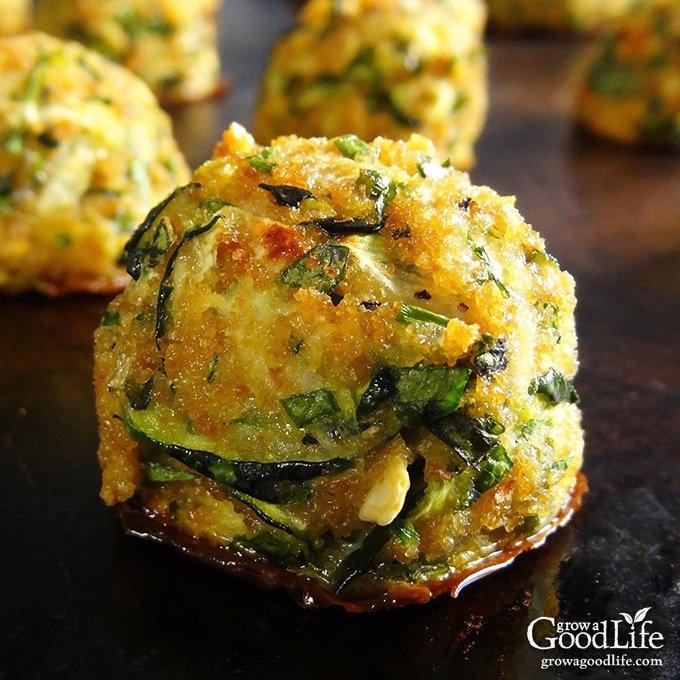 zucchini-garlic-bites